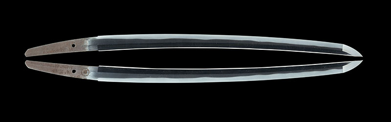 井上真改 (菊紋)延宝二二年八月日 二ツ胴落 Inoue Shinkai (Kiku Seal) A.D.1676  2 bodys cut